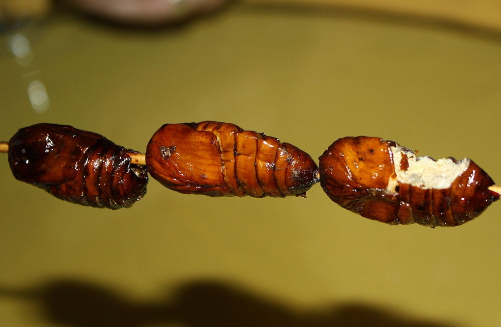 1024px-Fried-silkworm-china
